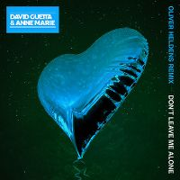 Cover David Guetta feat. Anne-Marie - Don't Leave Me Alone