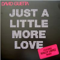 Cover David Guetta feat. Chris Willis - Just A Little More Love