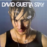 Cover David Guetta feat. Chris Willis - Stay