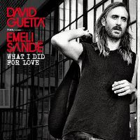 Cover David Guetta feat. Emeli Sandé - What I Did For Love