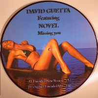 Cover David Guetta feat. Novel - Missing You