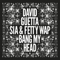 Cover David Guetta feat. Sia & Fetty Wap - Bang My Head