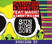Cover David Guetta & Showtek feat. Magic! & Sonny Wilson - Sun Goes Down