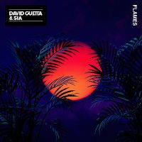 Cover David Guetta & Sia - Flames
