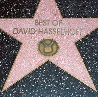 Cover David Hasselhoff - Best Of David Hasselhoff