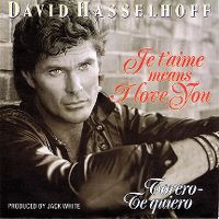 Cover David Hasselhoff - Je t'aime Means I Love You