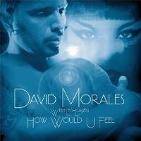 Cover David Morales with Lea-Lorién - How Would U Feel