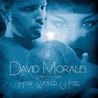 Cover David Morales with Lea-Lorién - How Would U Feel