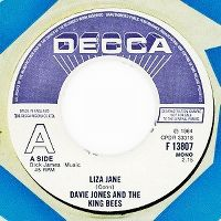 Cover Davie Jones with The King Bees - Liza Jane