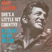 Cover Dean Martin - She's A Little Bit Country