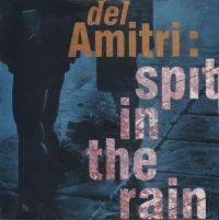Cover Del Amitri - Spit In The Rain