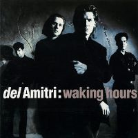 Cover Del Amitri - Waking Hours