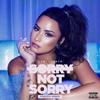 Cover Demi Lovato - Sorry Not Sorry