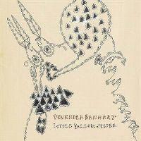 Cover Devendra Banhart - Little Yellow Spider