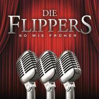 Cover Die Flippers - So wie früher