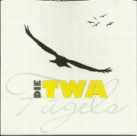 Cover Die Twa - Fûgels