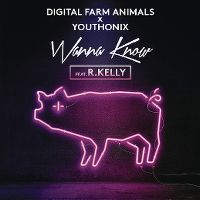 Cover Digital Farm Animals x Youthonix feat. R. Kelly - Wanna Know