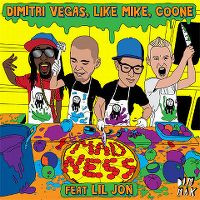 Cover Dimitri Vegas, Like Mike, Coone feat. Lil Jon - Madness