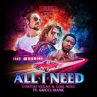 Cover Dimitri Vegas & Like Mike feat. Gucci Mane - All I Need