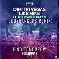 Cover Dimitri Vegas & Like Mike feat. Wolfpack & Katy B - Find Tomorrow (Ocarina)