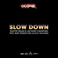 Cover Dimitri Vegas & Like Mike X Quintino feat. Boef, Ronnie Flex, Ali B & I Am Aisha - Slow Down
