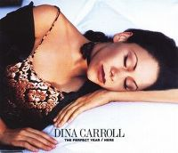 Cover Dina Carroll - The Perfect Year