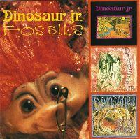 Cover Dinosaur Jr. - Fossils
