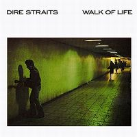 Cover Dire Straits - Walk Of Life