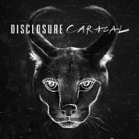 Cover Disclosure - Caracal