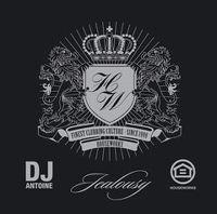 Cover DJ Antoine - Jealousy