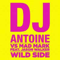Cover DJ Antoine vs Mad Mark feat. Jason Walker - Wild Side