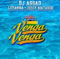 Cover DJ Assad feat. Luyanna & Jessy Matador - Venga venga