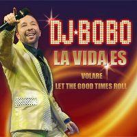 Cover DJ BoBo - La vida es