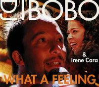 Cover DJ BoBo & Irene Cara - What A Feeling