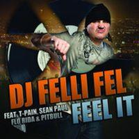 Cover DJ Felli Fel feat. T-Pain, Sean Paul, Flo Rida & Pitbull - Feel It