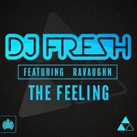 Cover DJ Fresh feat. RaVaughn - The Feeling