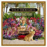 Cover DJ Khaled feat. Rihanna & Bryson Tiller - Wild Thoughts