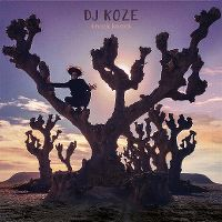 Cover DJ Koze - Knock Knock