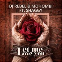 Cover DJ Rebel & Mohombi feat. Shaggy - Let Me Love You