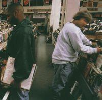 Cover DJ Shadow - Endtroducing