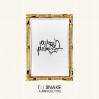 Cover DJ Snake & AlunaGeorge - You Know You Like It