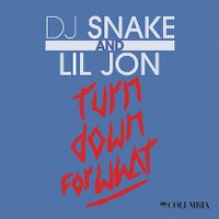 Cover DJ Snake and Lil Jon - Turn Down For What