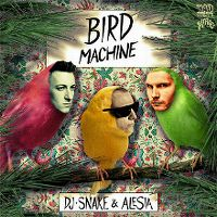 Cover DJ Snake feat. Alesia - Bird Machine