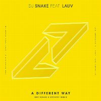 Cover DJ Snake feat. Lauv - A Different Way