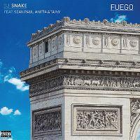 Cover DJ Snake feat. Sean Paul, Anitta & Tainy - Fuego