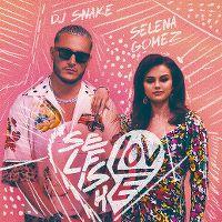 Cover DJ Snake & Selena Gomez - Selfish Love