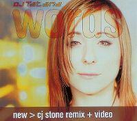 Cover DJ Tatana - Words