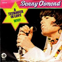Cover Donny Osmond - A Teenager In Love