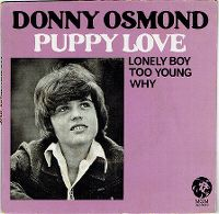 Cover Donny Osmond - Puppy Love