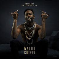 Cover Dopebwoy feat. 3robi & Mula B - Walou crisis